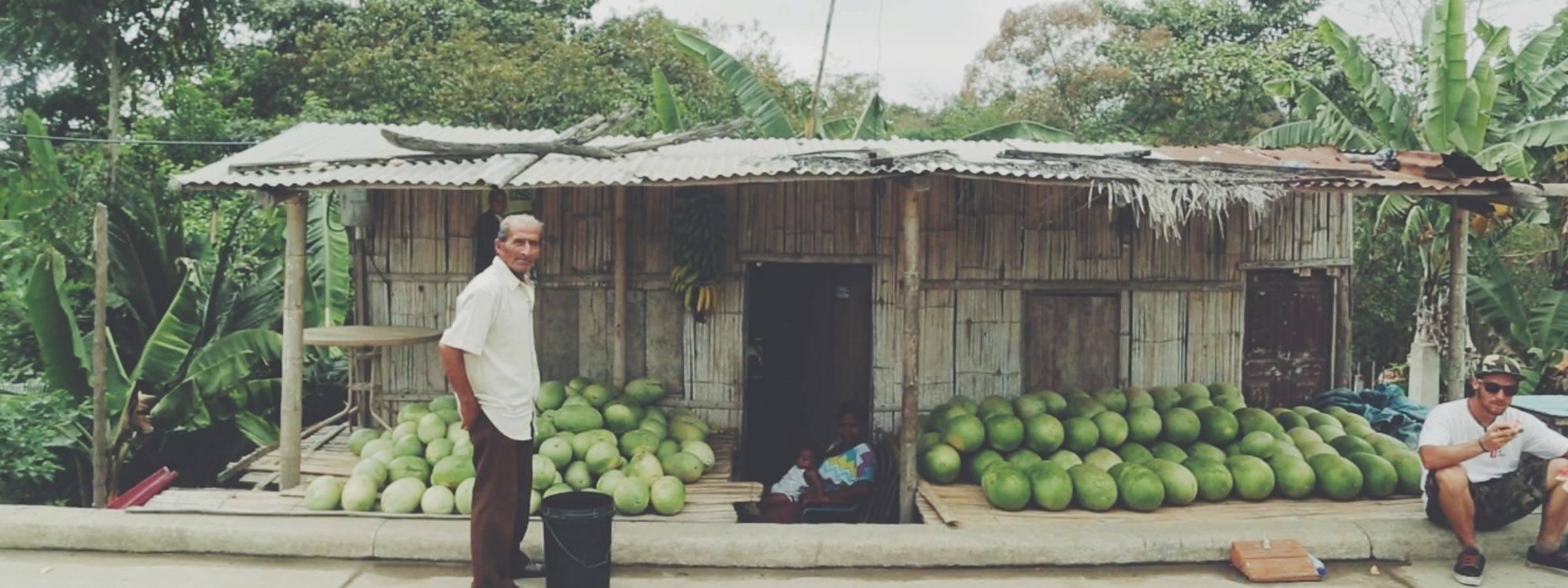 Nicoloas Picard Social Responsability -Watermelon
