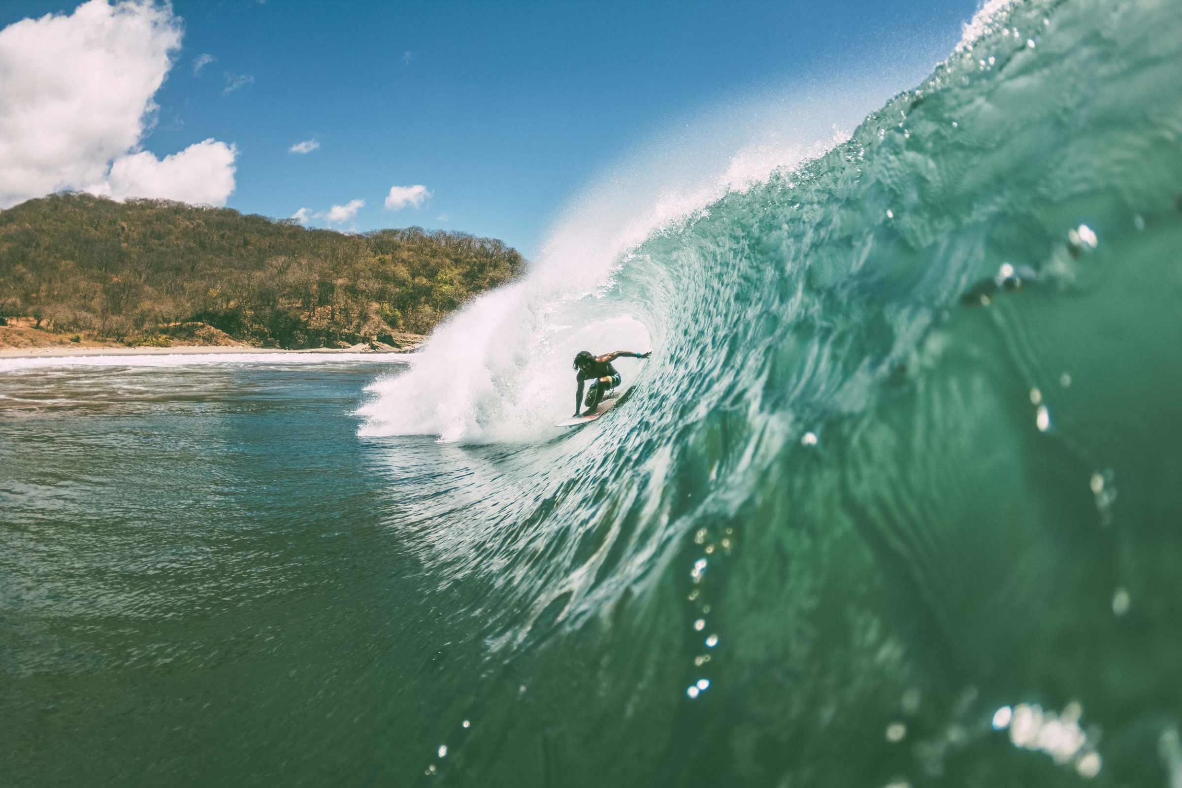 Rex Backside Barrel Nicaragua