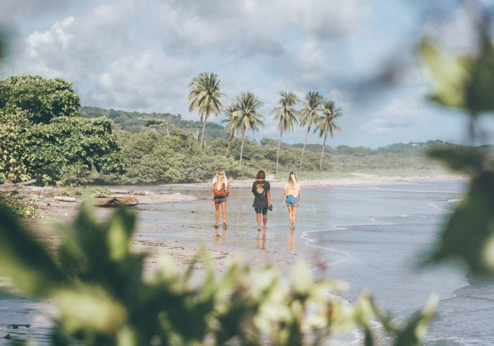 Beach walk explore nosara costa rica
