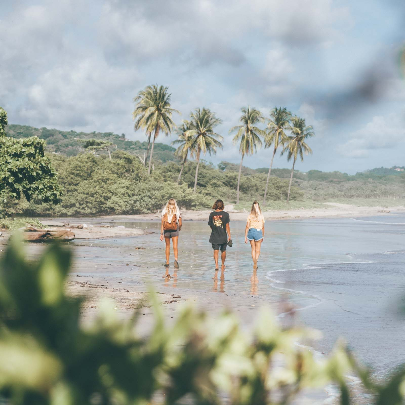 Beach walk explore nosara costa rica