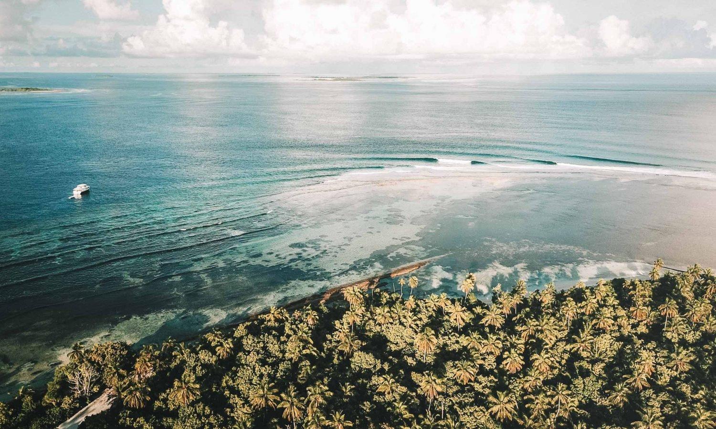 Bloe Bowls surf